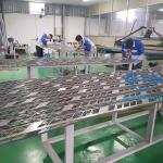 Vách ngăn được cắt CNC hàng loạt tại xưởng